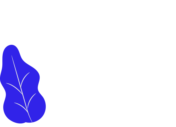 Image-layer_2.2