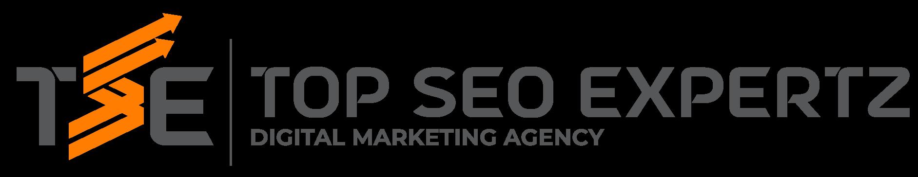 Top SEO Expertz Logo for Services
